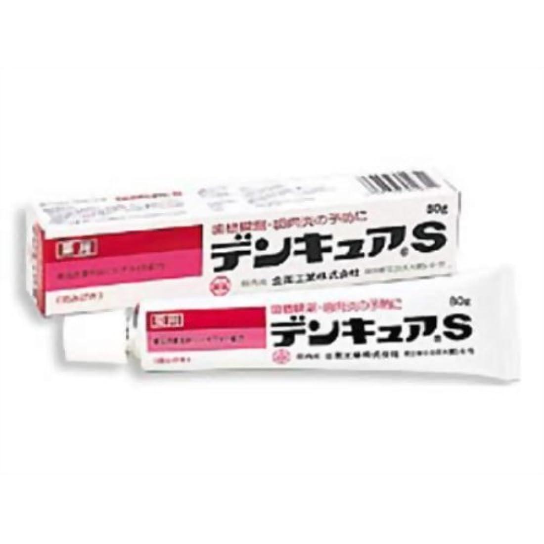化学薬品成人期保存デンキュアS 40g