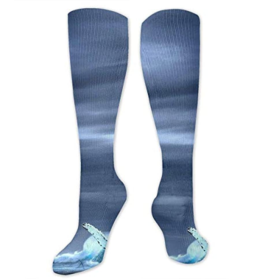 融合爵飛躍靴下,ストッキング,野生のジョーカー,実際,秋の本質,冬必須,サマーウェア&RBXAA Blue Whale Socks Women's Winter Cotton Long Tube Socks Cotton Solid...