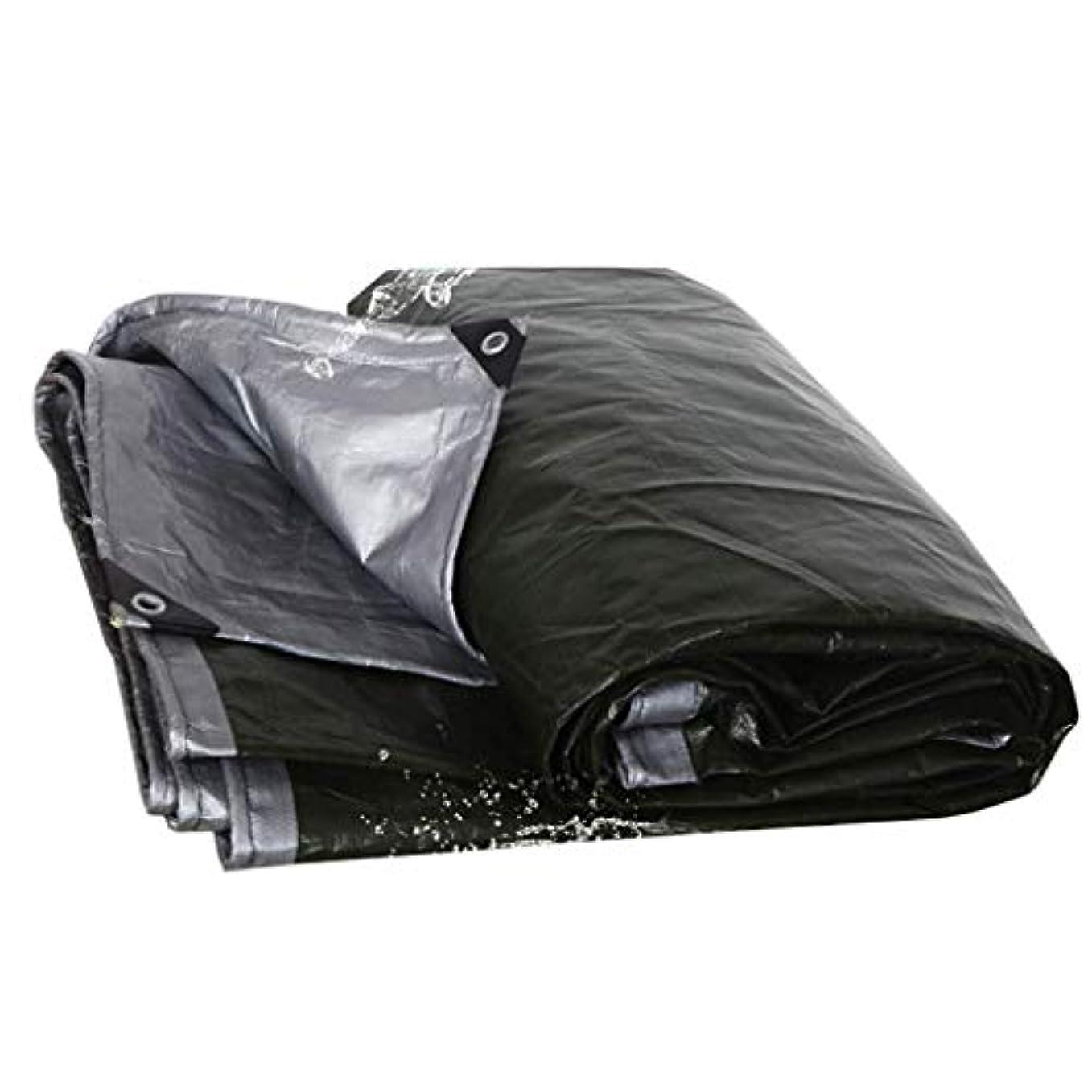 彼女の抽象化疫病防水シート防寒厚防水防水防護 - 屋外キャンプテントタープオーニングカバー布トラックリノリウムアイレット付きの小屋布 FENGMIMG (色 : ブラック, サイズ さいず : 4*10m)