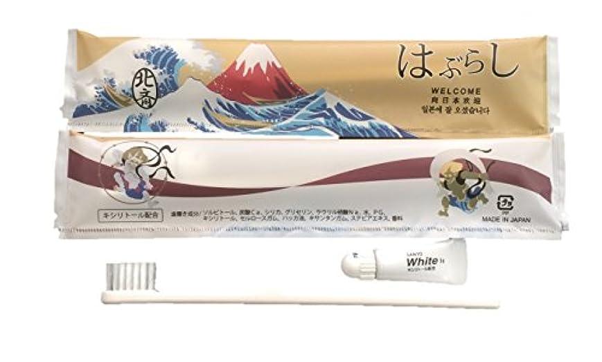 できない不格好距離使い捨てハブラシ JS-5M 100本 日本製 JAPANSERIES アメニティ 日本シリーズ 葛飾北斎 100本セット