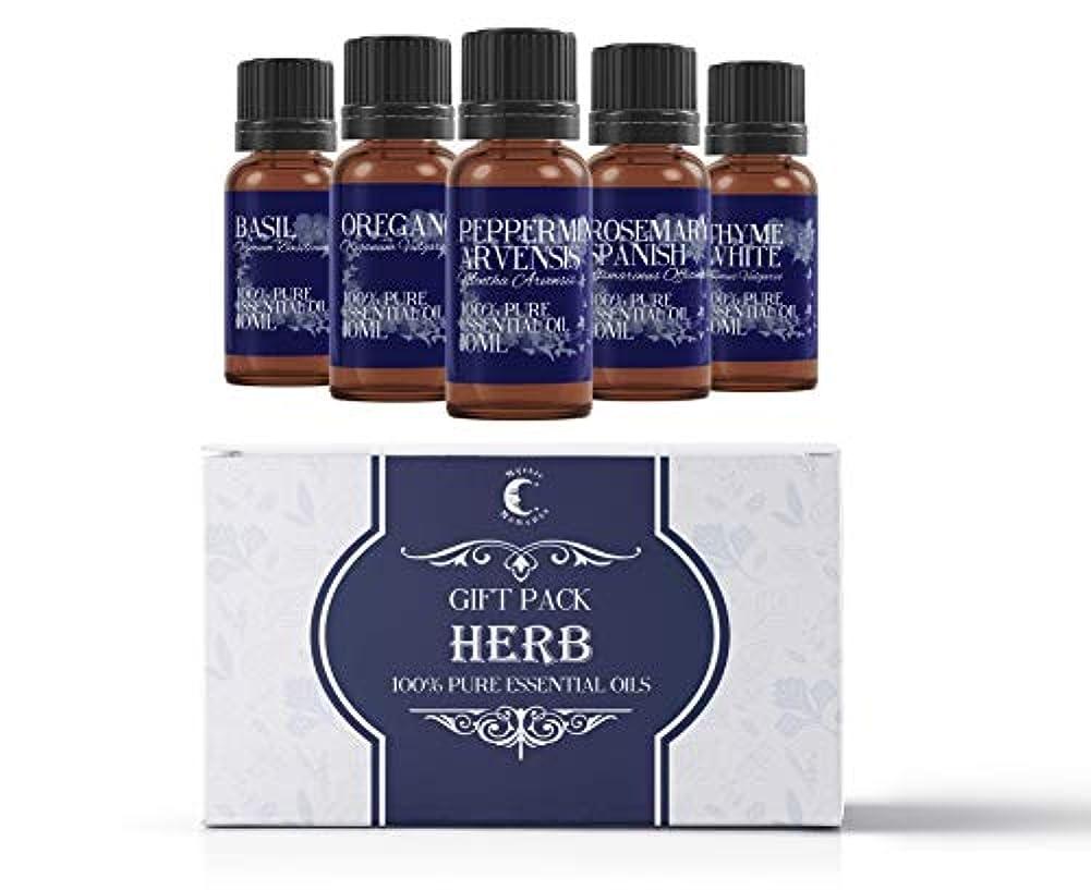 投票同僚ビリーMystic Moments | Essential Oil Starter Pack - Herb Oils - 5 x 10ml - 100% Pure