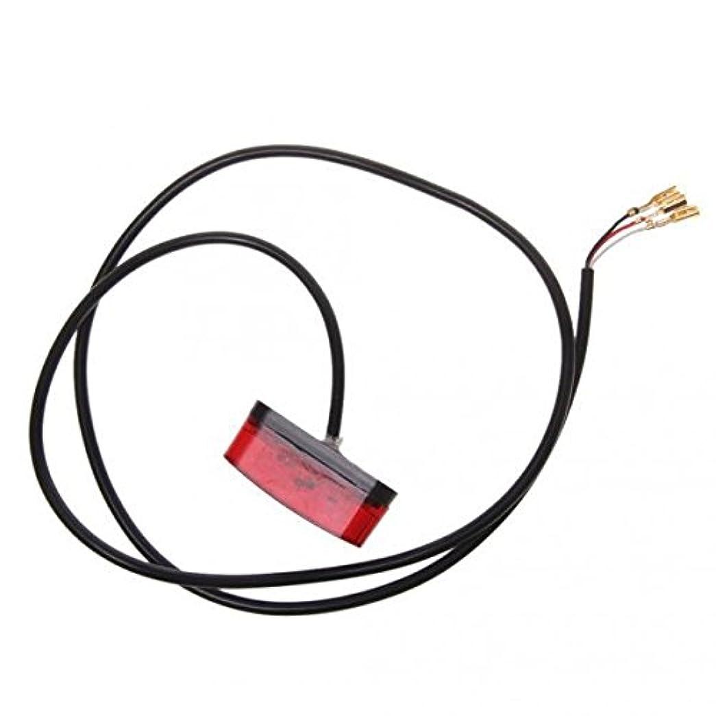 拒絶する濃度ベーシックSONONIA 2個 お買い得 アクリル製 自転車 スクーター 電気 自動車 フェンダー 3ワット LED  テールライト  赤