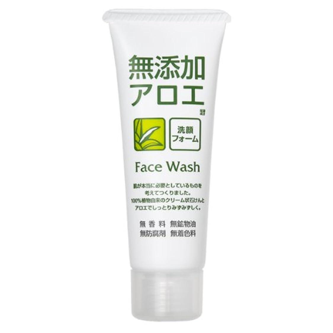 破壊コンチネンタル英語の授業がありますロゼット 無添加アロエ 洗顔フォーム 140g