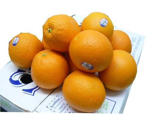 オレンジ36個入り 東洋フルーツ(有)