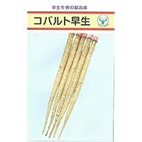 【種子】ごぼう コバルト早生 10ml