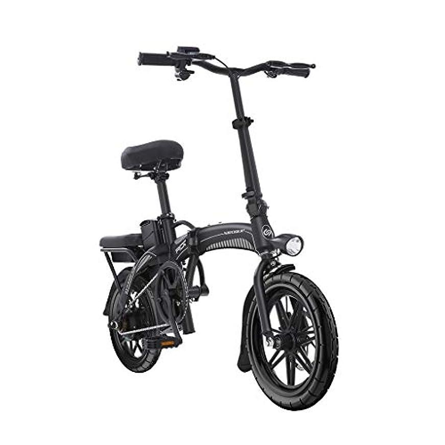 専門用語遺棄された川折りたたみ電動自転車14インチインテリジェントLEDライトバッテリーカー小型リチウム電池48V5AH自転車、パワーライフ20キロ (Color : WHITE, Size : 125*57*100CM)