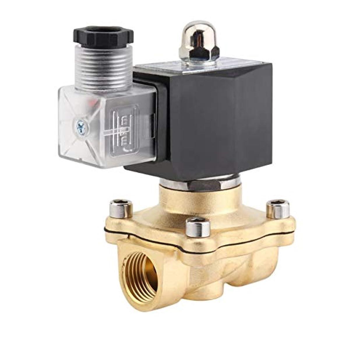 コンベンション略す資格情報Saikogoods 高性能1/2インチAC 220V 2Wスクエアコイル純銅直動ソレノイドバルブ電磁弁 ブラック&ゴールデン