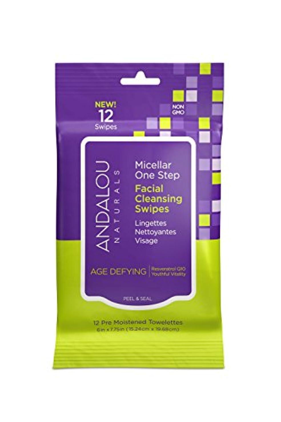 忘れられない標準磨かれたオーガニック ボタニカル クレンジングシート 洗顔シート ナチュラル フルーツ幹細胞 「 Aミセラスワイプ 12枚入り 」 ANDALOU naturals アンダルー ナチュラルズ