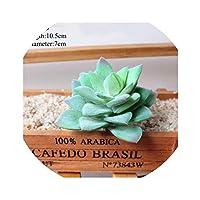 1ピース人工多肉植物草マルチスタイル偽風景ランドロータス珍しい植物花家の装飾結婚式用品、O