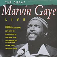Great Marvin Gaye Concert