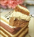 ロイヤルガストロ ケーキで感謝状 5号 カーネーション 母の日 名入れ