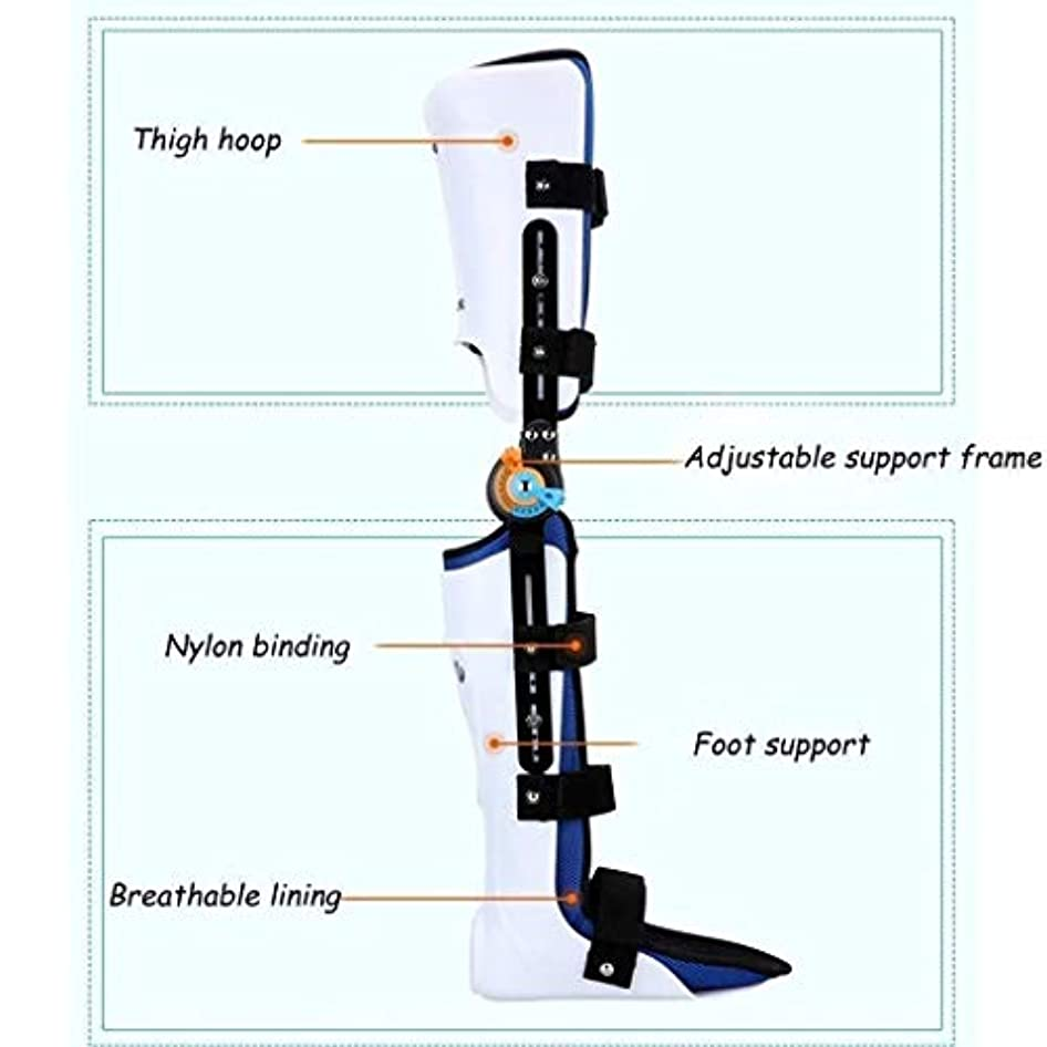 誰が発行超高層ビルヒンジ付きROM膝ブレース、膝蓋骨損傷イモビライザーサポート医療整形外科用ガードプロテクター-ACL、靭帯、スポーツ傷害用の調整可能なフルレッグスタビライザー (Color : As Picture, Size : Left)