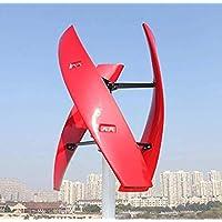 400W/600W風力発電機垂直磁気浮上ブラシレスフリーコントローラ (24V, 600W)