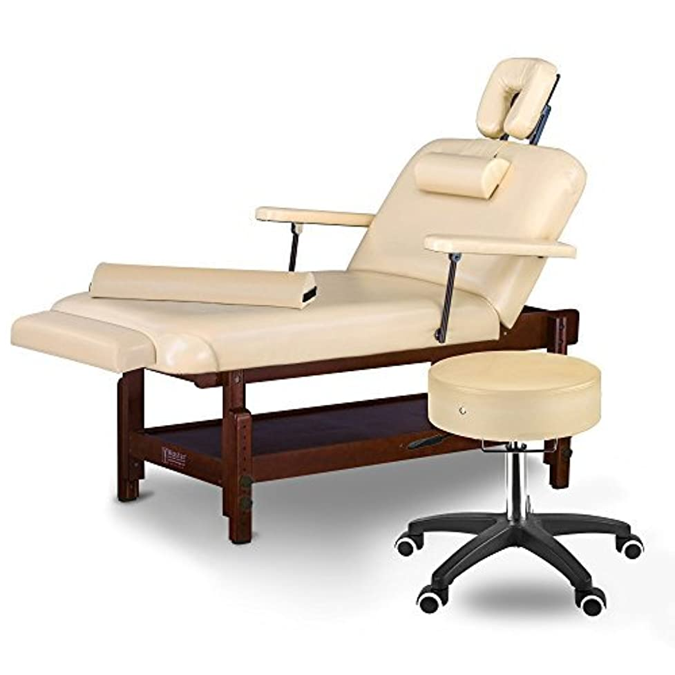 シュガー主要なインタラクションMaster Massage Samson Stationary Massage Table Salon Beauty Bed Package Cream 31 [並行輸入品]