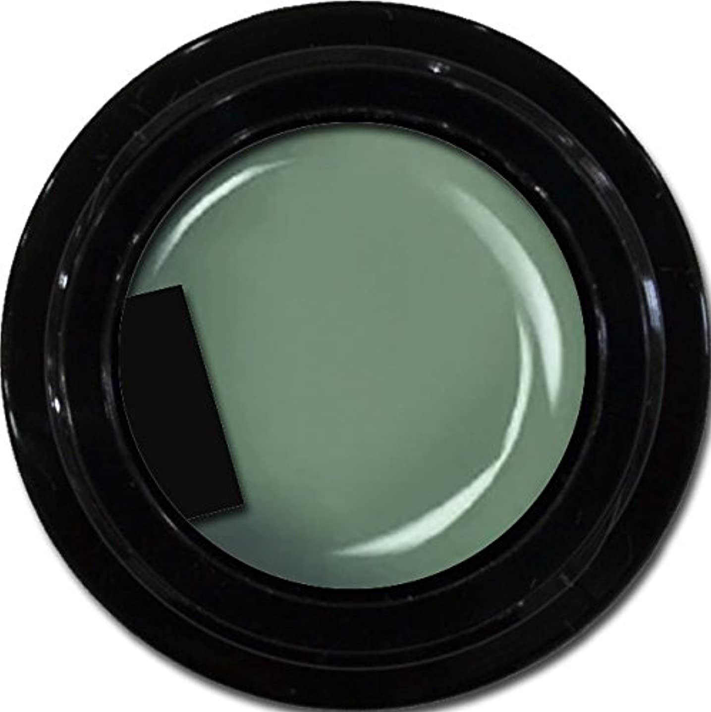 コンチネンタルバケットプリーツカラージェル enchant color gel M714 Army 3g/ マットカラージェル M714 アーミー 3グラム