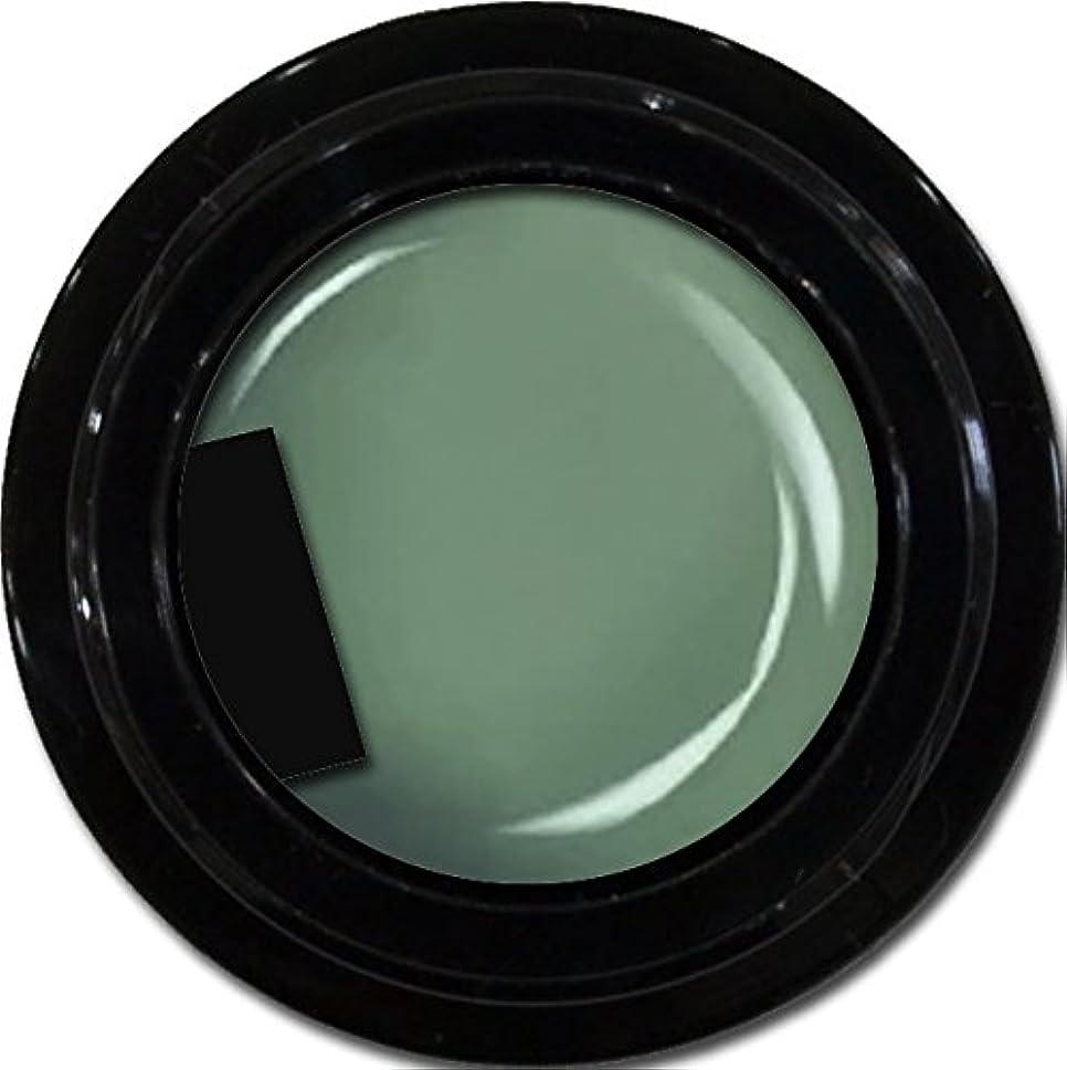 カラージェル enchant color gel M714 Army 3g/ マットカラージェル M714 アーミー 3グラム