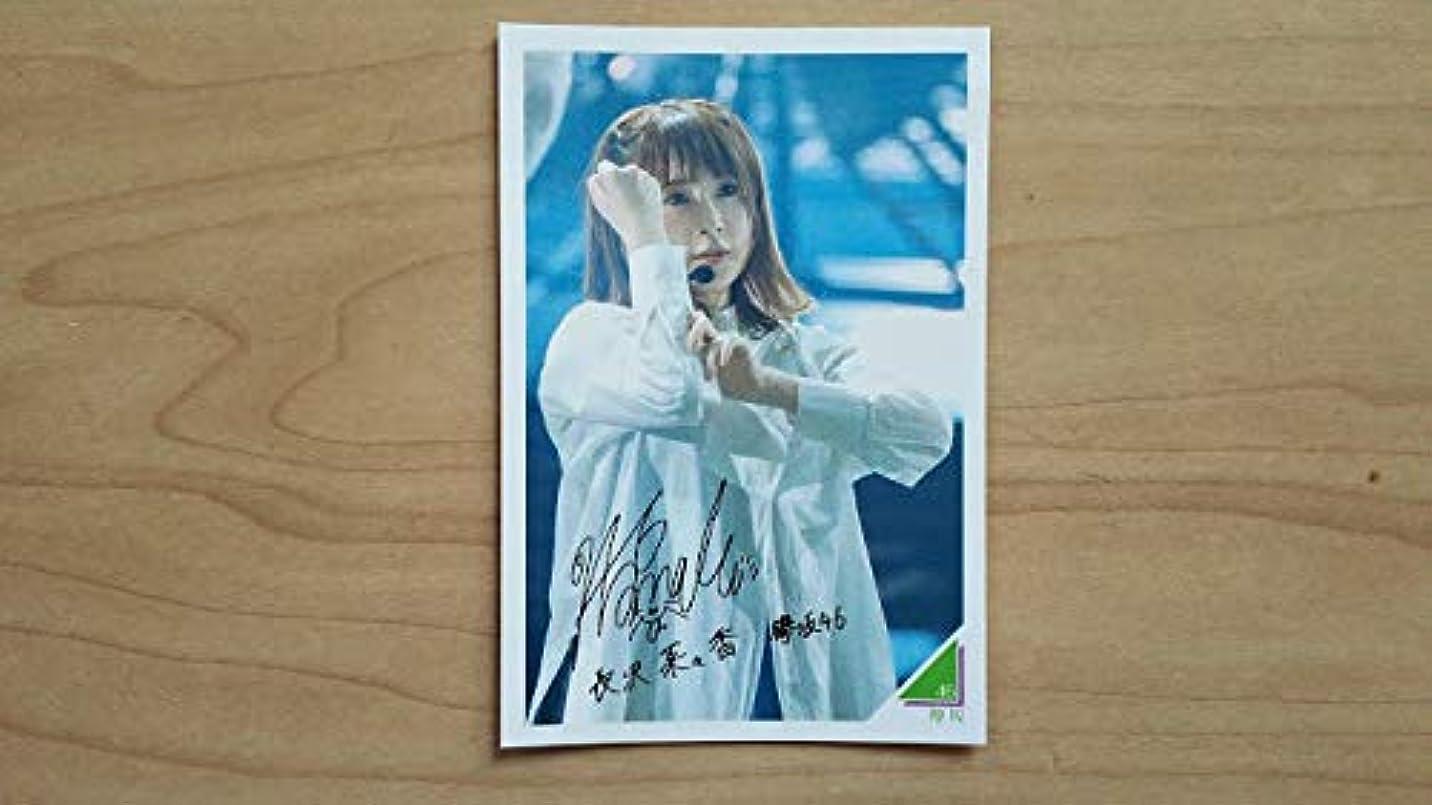 野な合理的ドロップ☆ 永谷園 ライブフォトカード 欅坂46 長沢菜々香 新品 ☆