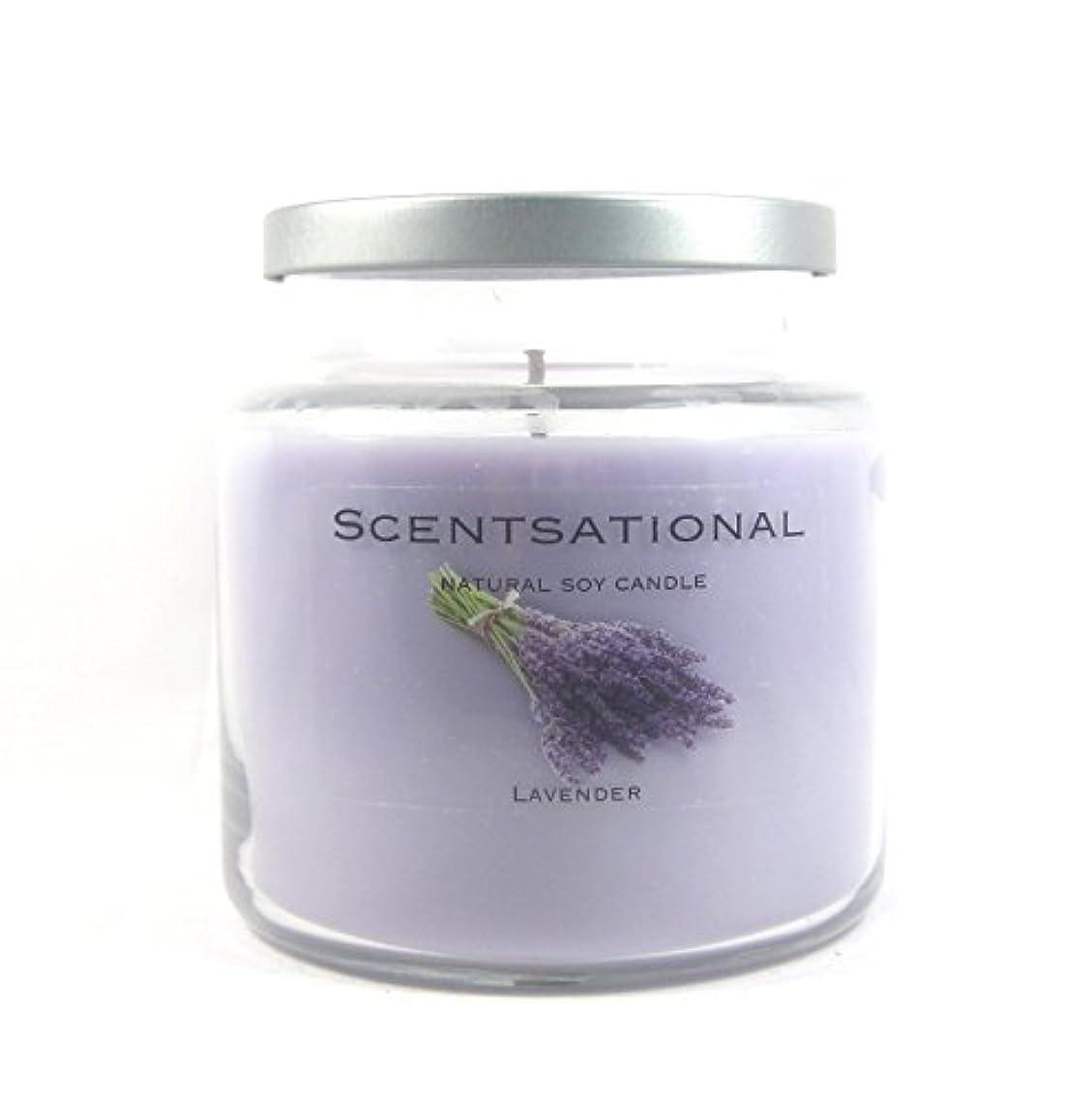 聡明名門ローマ人Scentsational Soaps &キャンドル自然Soy Candle W /蓋19 oz – --ラベンダー