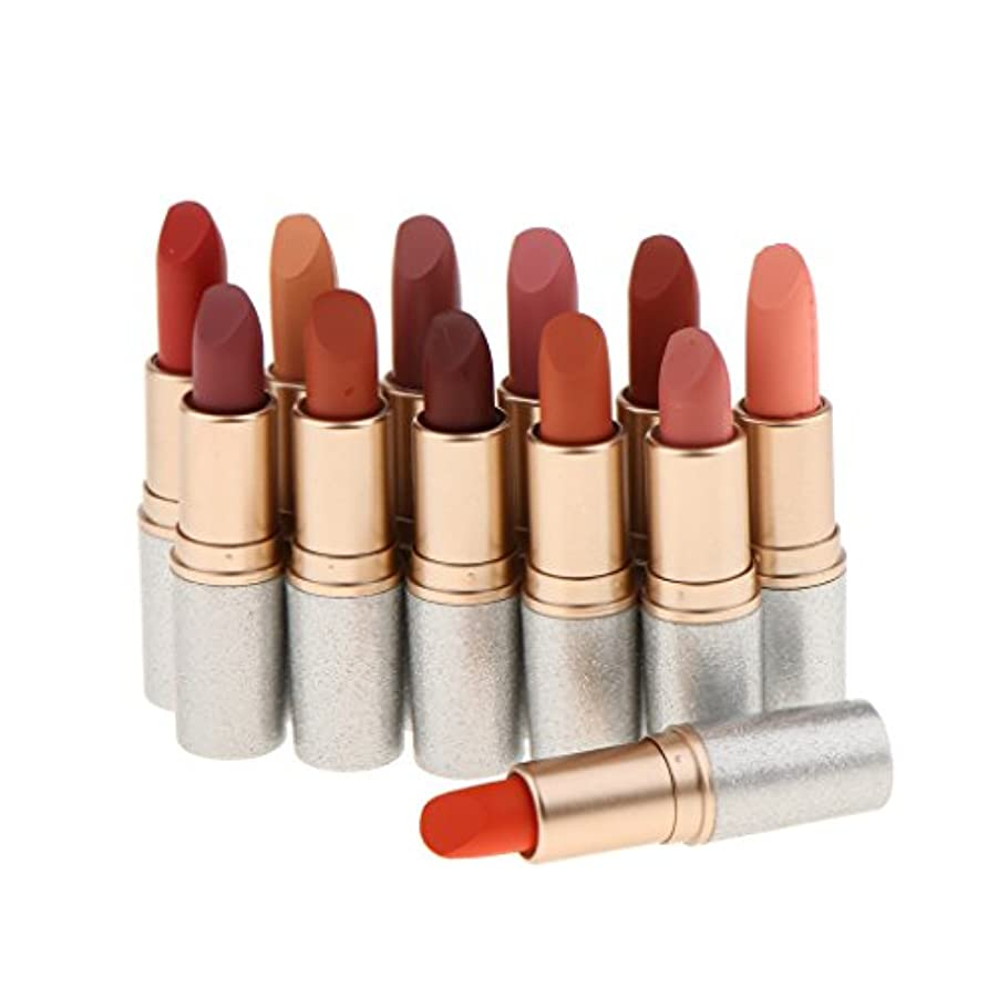 心理的にテントアイザックInjoyo 方法12色の無光沢の口紅の唇の光沢の防水構造の化粧品