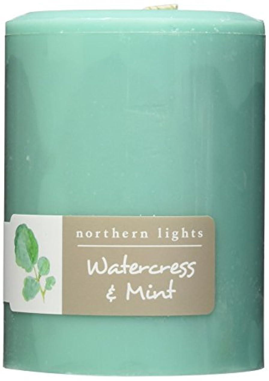 ストッキング用量リーダーシップNorthern Lights Candles Watercress &ミントFragranceパレットPillar Candle、3 x 4