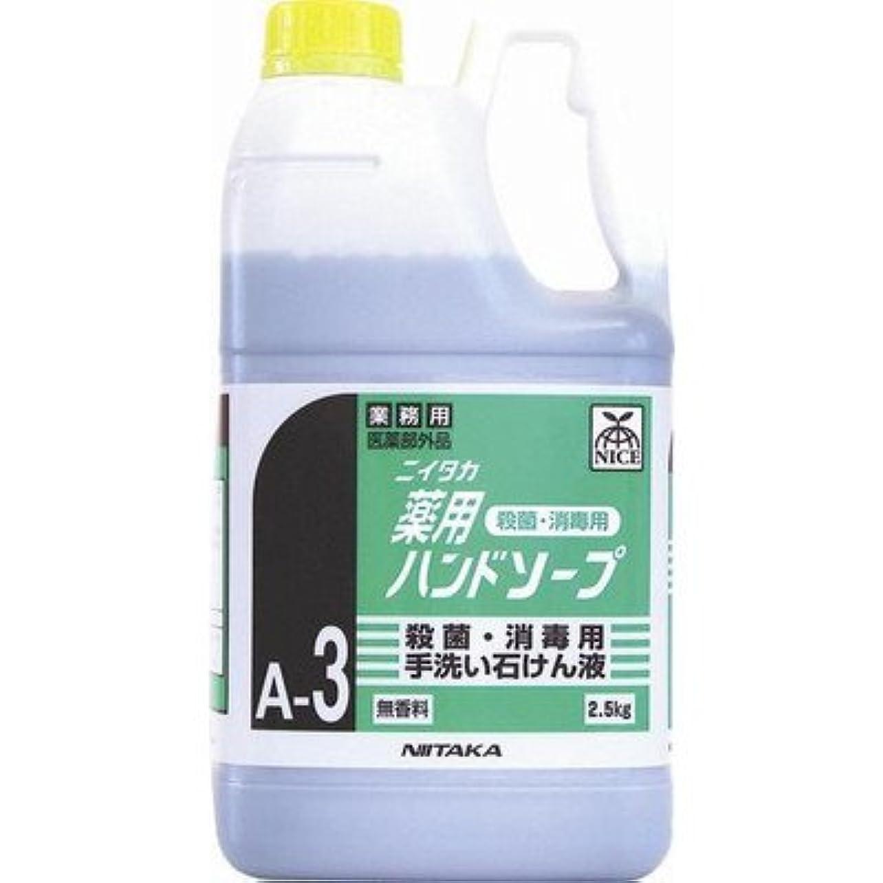 羨望マイクロプロセッサ不健康ニイタカ 業務用手洗い石けん液 薬用ハンドソープ(A-3) 2.5kg×6本