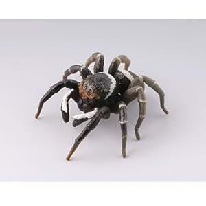 カプセルQミュージアム 実践!ひっつき虫図鑑 部屋の壁の昆虫王国 [3.アダンソンハエトリグモ](単品)