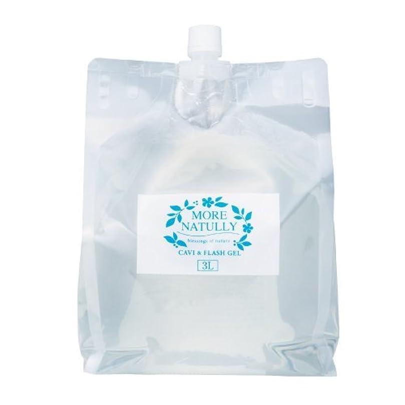 レッスン微生物エンターテインメントモアナチュリー キャビ&フラッシュジェル 【スーパーハード】3kg