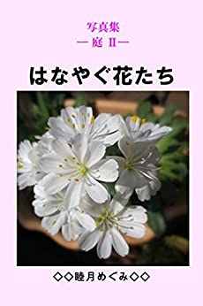 Photos Collection Garden Showy Flowers (Japanese Edition) by [Megumi Mutsuki]
