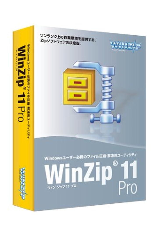 円周考古学懲らしめWinZip 11 Pro