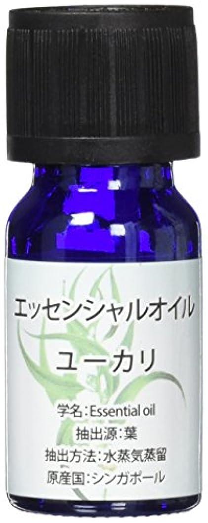 割れ目合意副産物エッセンシャルオイル(天然水溶性) 2個セット ユーカリ?WJ-456