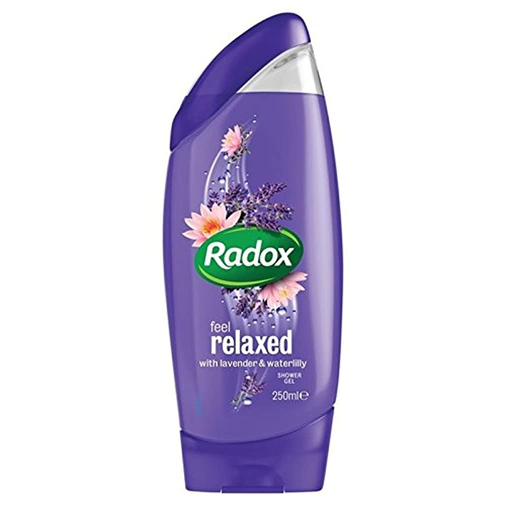 塊複製する言い訳はリラックスシャワージェル250ミリリットルを感じます x2 - Radox Feel Relaxed Shower Gel 250ml (Pack of 2) [並行輸入品]