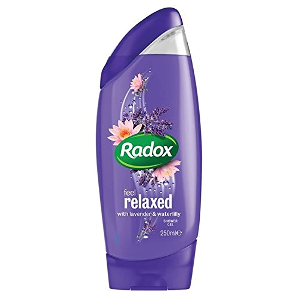 本気サルベージ財団はリラックスシャワージェル250ミリリットルを感じます x4 - Radox Feel Relaxed Shower Gel 250ml (Pack of 4) [並行輸入品]