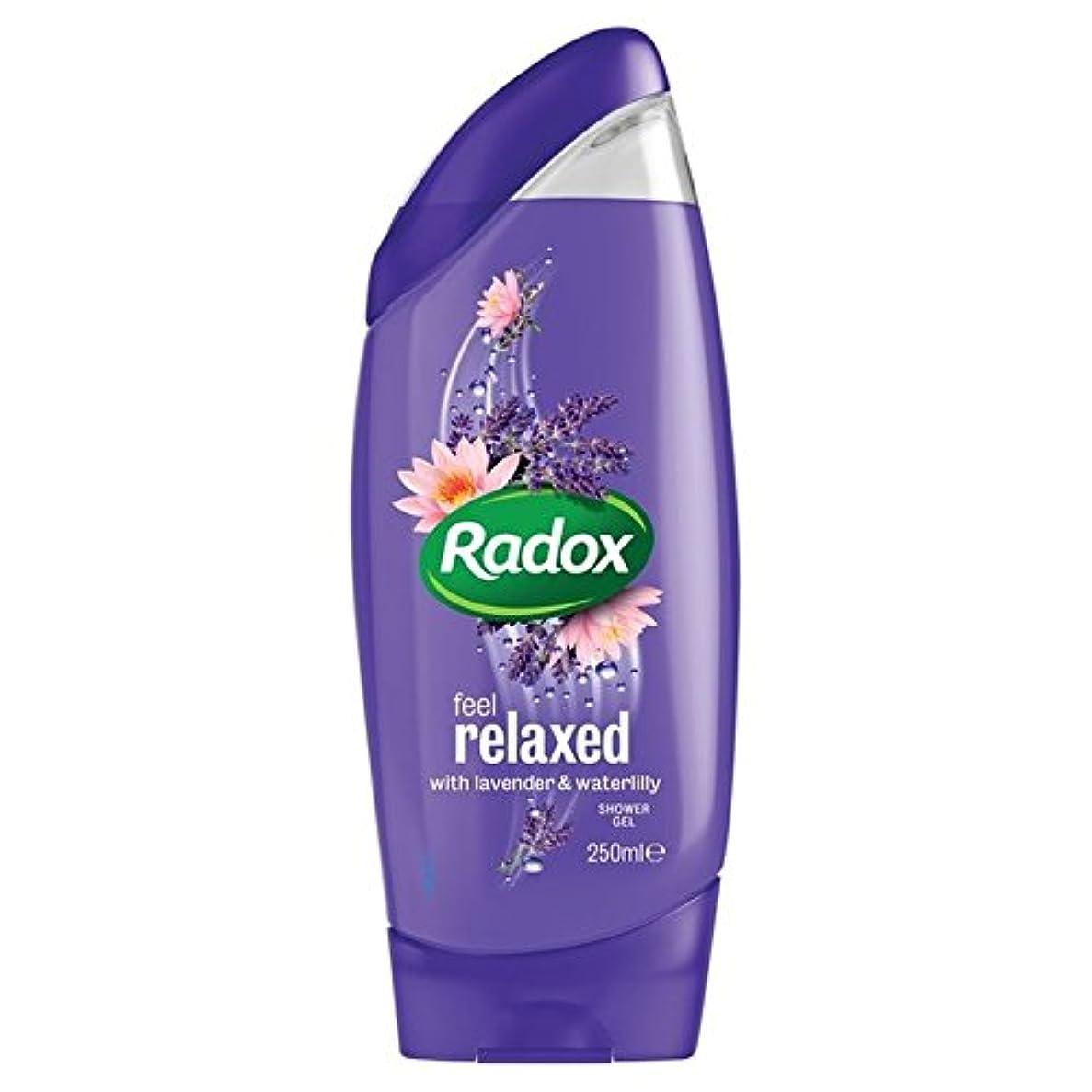 憲法大胆不敵欲しいですRadox Feel Relaxed Shower Gel 250ml - はリラックスシャワージェル250ミリリットルを感じます [並行輸入品]