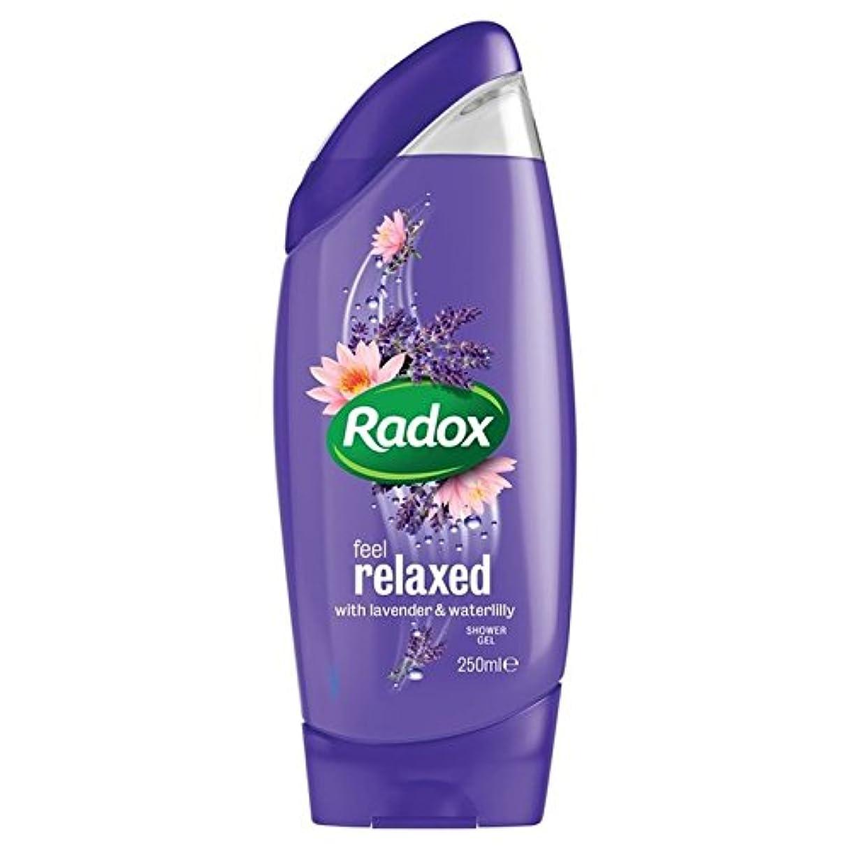 熱あまりにも群れはリラックスシャワージェル250ミリリットルを感じます x2 - Radox Feel Relaxed Shower Gel 250ml (Pack of 2) [並行輸入品]