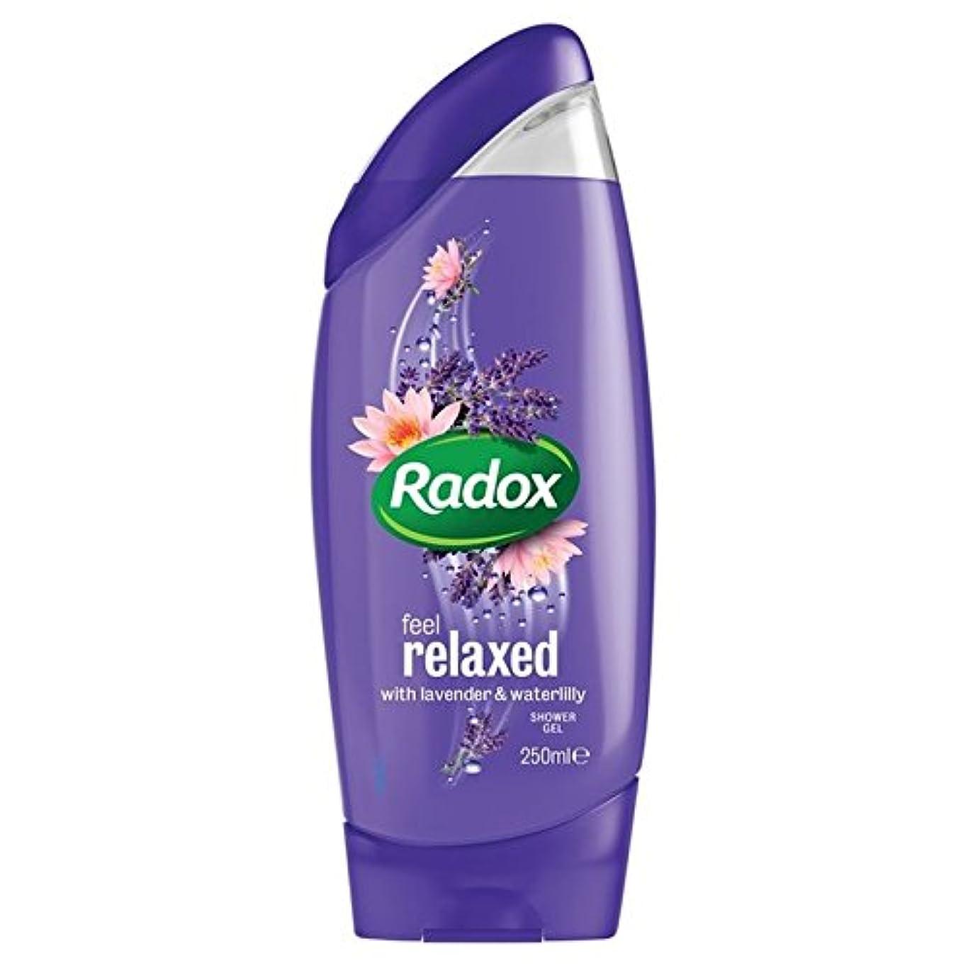 一時解雇する恒久的純粋なはリラックスシャワージェル250ミリリットルを感じます x4 - Radox Feel Relaxed Shower Gel 250ml (Pack of 4) [並行輸入品]
