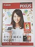 桐谷美玲 Canon(キャノン) プリンター PIXUS カタログ 2013年