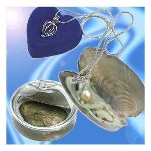 缶パールネックレス 幸せを呼ぶ自分だけの真珠