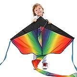 カラフルスカイカイト 三角凧 簡単に揚げられる 大人も子供にも最適!アウトドアタコ 凧糸とハン...