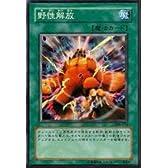 遊戯王カード 野性解放 306-033R_WK
