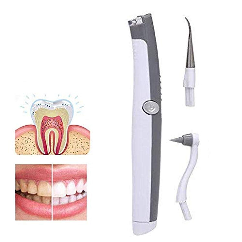 情緒的信頼性のあるフルート歯のクリーニングツール電動歯ブラシ煙汚れ歯石Ledライト歯の染色消しゴムプラークリムーバーポータブル歯のホワイトニング楽器