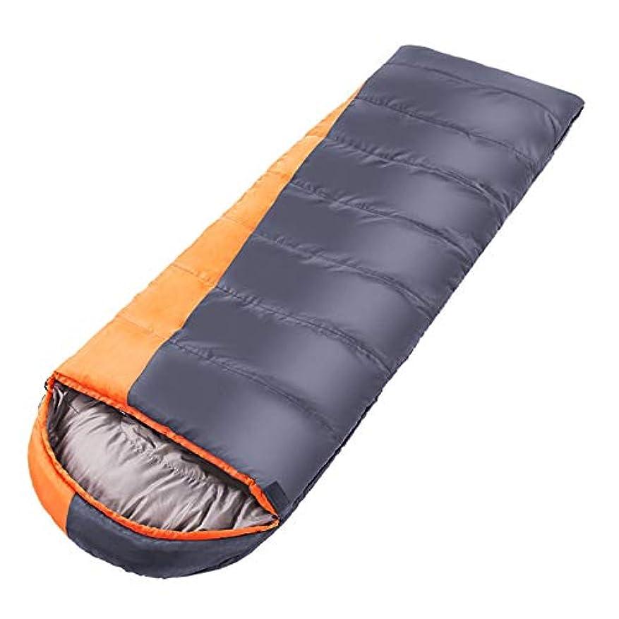 扇動する汚染するいらいらするTLMYDD 寝袋大人の屋外の冬の厚いステッチ暖かいキャンプ 寝袋 (Color : Gray)