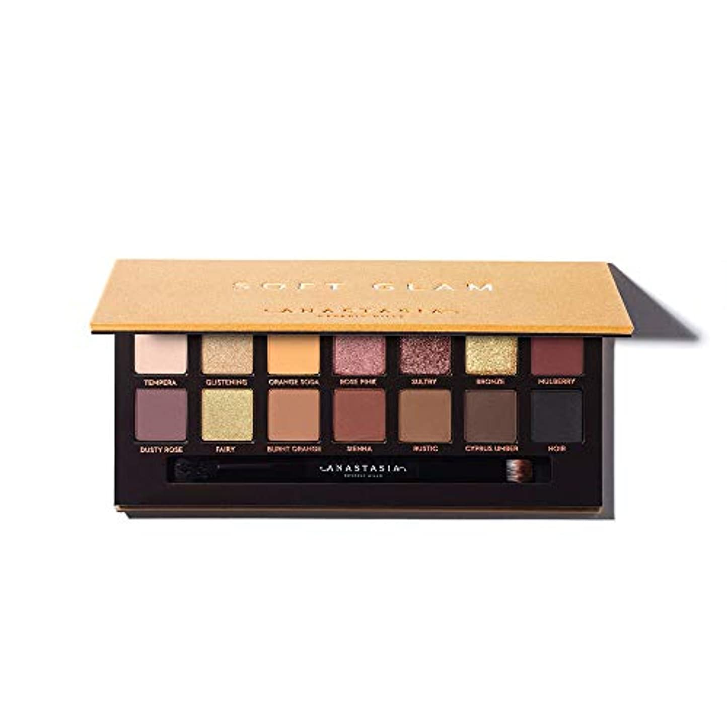 第四結婚式ハンサムANASTASIA BEVERLY HILLS Soft Glam Eyeshadow Palette