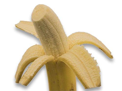 フルーツなかやま 有機栽培 ペルー産 インカバナナ 10本入 糖度20度以上 袋入り