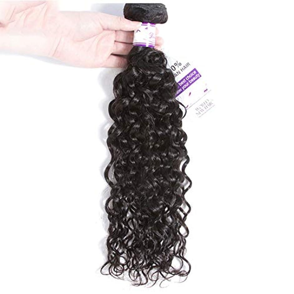 ニコチン雑多なバージンかつら ペルーの水の波束100%人間の髪の毛の織り方ナチュラルカラー非レミーの毛延長8-28インチ (Stretched Length : 8inches)