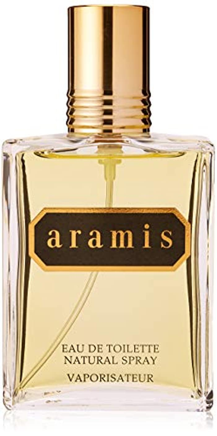 魅力人類ヒョウアラミス ARAMIS アラミス EDT SP 110ml