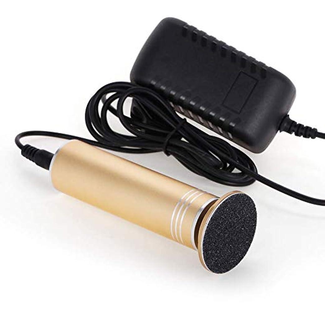 バイオレット王族ロードハウス女性/男性のための60個の取り替えのサンドペーパーディスク専門のペディキュアツールのフットファイル(速度調節可能)が付いている電子フットファイル厚いカルス(金)
