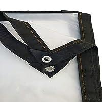 厚くて透明な防雨布防水日焼け止めプラスチック布屋外バルコニー防塵オーニングクロップコールドシェッドフィルム (Color : 2X4M)