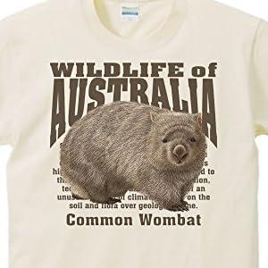 エムワイディエス(MYDS) ヒメ ウォンバット(オーストラリアの動物)/半袖Tシャツ/ライトベージュ/Mサイズ