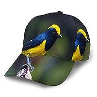 野球帽 羽鳥22 快適で通気性調節可能なサイズ男女兼用メンズ野球帽