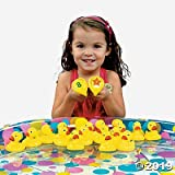 Duck Matching Game (set of 20 rubber duckies) Party Games